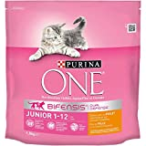 Croquettes pour chatons Purina One junior